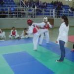 Χαϊδάρι - Φιλικό Πρωτάθλημα TKD (5/4/2015)
