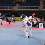 Άνω Λιόσια - Α΄ Πανελλήνιο Κύπελλο TKD 4/12/2015