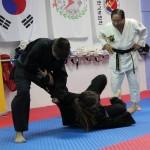 Σεμινάριο Hapkido από τον Grand Master Nah - 9/12/2015