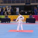 1ο Διεθνές Τεχνικό Πρωτάθλημα Πούμσε 24/1/2016
