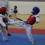 Χαϊδάρι Φιλικό Πρωτάθλημα Tae Kwon Do 18/03/2012