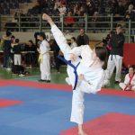 Γλυφάδα - Πανελλήνιο Πρωτάθλημα TSD - Fighting Rules (27/1/2019)