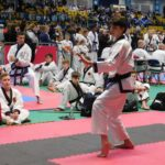 UK Open Tournament Tang Soo Do 2019 - 27/04/2019