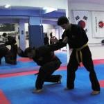 Α.Σ. Σάτζα Σεμινάριο Hapkido 07/04/2012 Υπεύθυνος σεμιναρίου κος Στέφανος Μπούτιος.